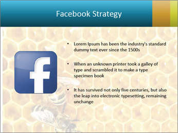 Working bees on honey cells PowerPoint Template - Slide 6