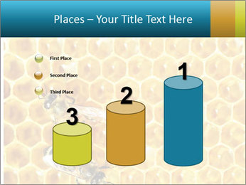 Working bees on honey cells PowerPoint Template - Slide 65