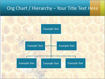 Working bees on honey cells PowerPoint Template - Slide 66
