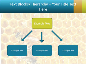 Working bees on honey cells PowerPoint Template - Slide 69