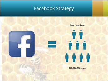 Working bees on honey cells PowerPoint Templates - Slide 7