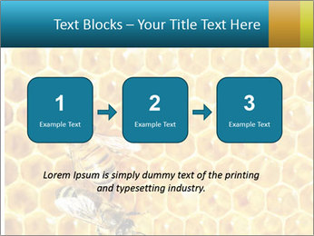 Working bees on honey cells PowerPoint Template - Slide 71