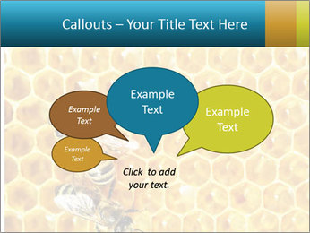 Working bees on honey cells PowerPoint Templates - Slide 73