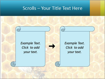 Working bees on honey cells PowerPoint Template - Slide 74