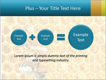 Working bees on honey cells PowerPoint Template - Slide 75