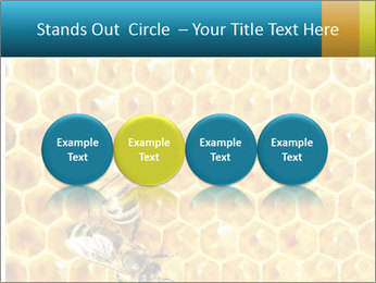 Working bees on honey cells PowerPoint Template - Slide 76