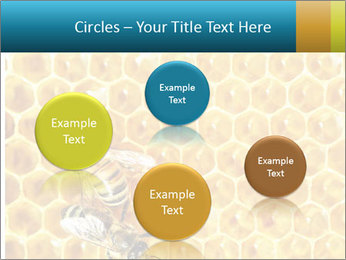 Working bees on honey cells PowerPoint Template - Slide 77