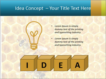 Working bees on honey cells PowerPoint Template - Slide 80
