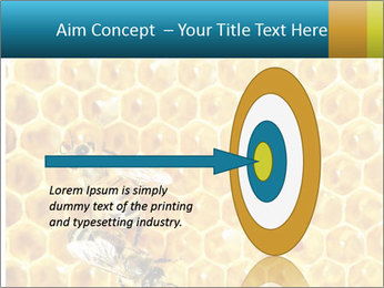 Working bees on honey cells PowerPoint Template - Slide 83