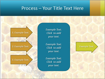 Working bees on honey cells PowerPoint Template - Slide 85