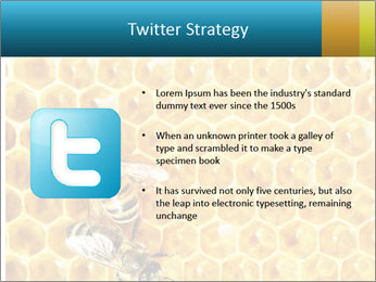 Working bees on honey cells PowerPoint Template - Slide 9