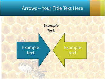 Working bees on honey cells PowerPoint Templates - Slide 90