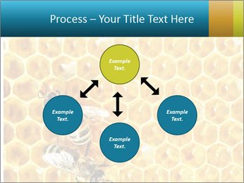 Working bees on honey cells PowerPoint Template - Slide 91