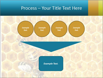 Working bees on honey cells PowerPoint Templates - Slide 93