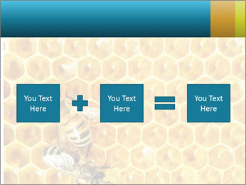 Working bees on honey cells PowerPoint Template - Slide 95