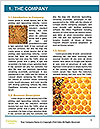 0000093953 Word Template - Page 3