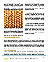 0000093953 Word Template - Page 4