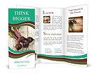 0000093958 Brochure Template
