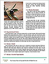 0000093958 Word Template - Page 4