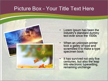 Spring design PowerPoint Template - Slide 20