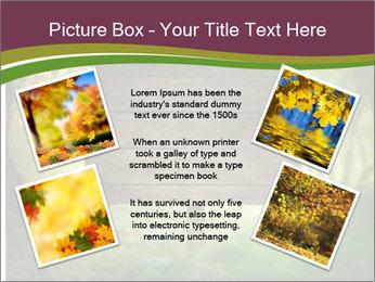Spring design PowerPoint Template - Slide 24
