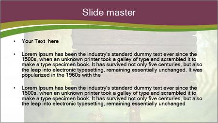 Spring design PowerPoint Template - Slide 2