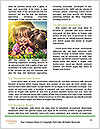 0000093966 Word Templates - Page 4