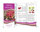 0000093979 Brochure Templates