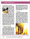 0000093981 Word Templates - Page 3