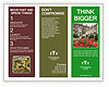 0000093982 Brochure Templates