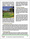 0000093982 Word Templates - Page 4