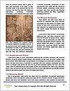 0000093986 Word Templates - Page 4
