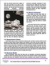 0000093987 Word Templates - Page 4
