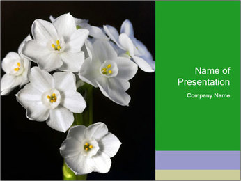 Flowers PowerPoint Templates - Slide 1