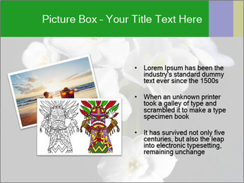 Flowers PowerPoint Templates - Slide 20