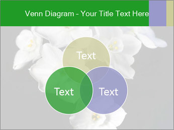 Flowers PowerPoint Templates - Slide 33