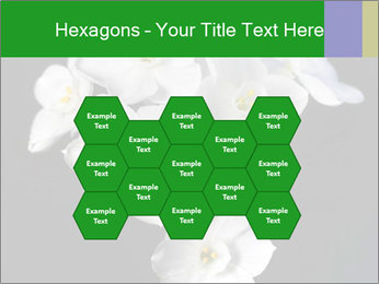 Flowers PowerPoint Templates - Slide 44