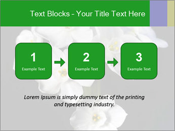 Flowers PowerPoint Templates - Slide 71