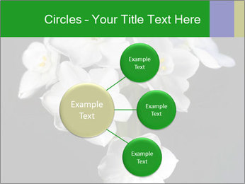 Flowers PowerPoint Templates - Slide 79