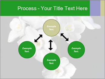 Flowers PowerPoint Templates - Slide 91