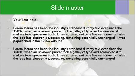 Flowers PowerPoint Template - Slide 2