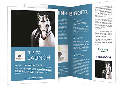 0000094007 Brochure Template
