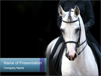 Horse PowerPoint Template - Slide 1