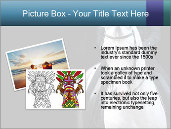 Horse PowerPoint Templates - Slide 20