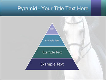 Horse PowerPoint Templates - Slide 30