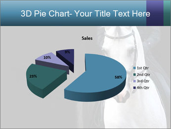 Horse PowerPoint Template - Slide 35
