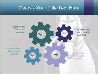 Horse PowerPoint Templates - Slide 47