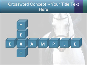 Horse PowerPoint Template - Slide 82