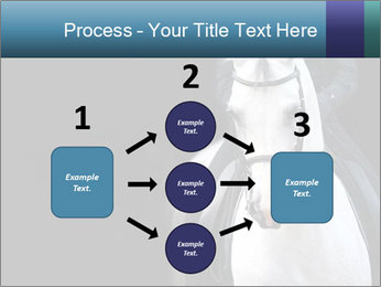 Horse PowerPoint Templates - Slide 92
