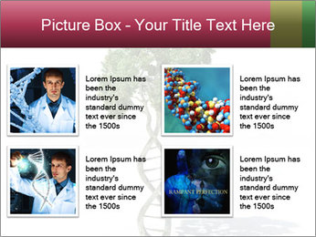 DNA shaped tree with trunks PowerPoint Template - Slide 14